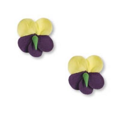 violetta zucchero