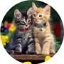 Cialda per torta di compleanno con gatti