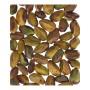 pistacchi naturali sgusciati