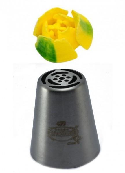 Beccucci Russi Tulipano 6 petali